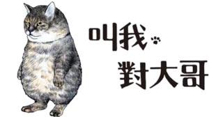 日本最強勢貓大哥來台,累計銷售超過260,000冊_《叫我對大哥》